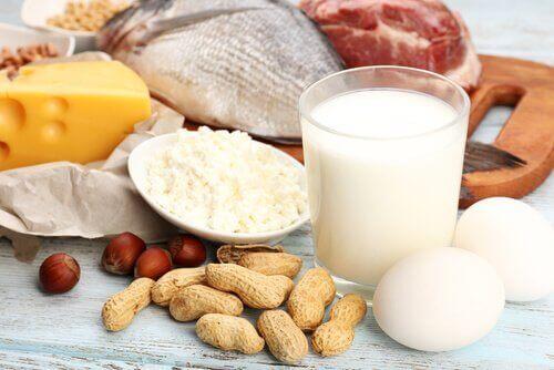 Producten die rijk zijn aan eiwitten