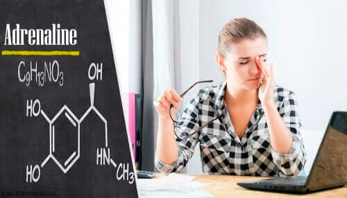 Mogelijke bijwerkingen van epinefrine