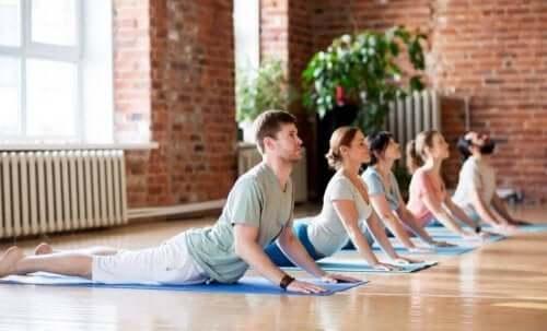 oefeningen tegen lage rugpijn zoals yoga