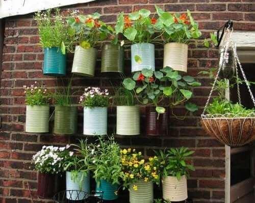 Een verticale tuin bespaart ruimte als je weinig plek hebt
