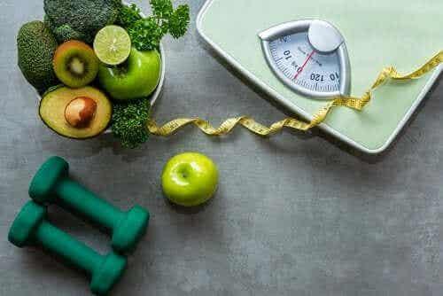 Voedingsmiddelen voor veganistische atleten