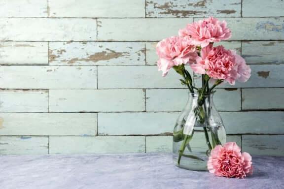 Glazen vazen schoon te maken