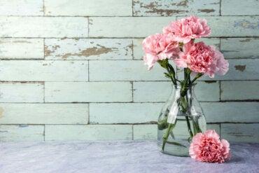 3 manieren om je glazen vazen schoon te maken