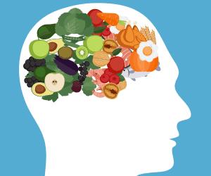 voeding voor de hersenen