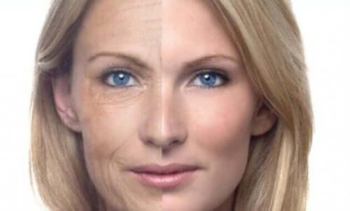 Het verschil de huid met en zonder nachtcrème