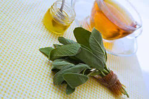 Salie en honing om schaafwonden te behandelen