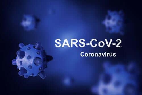 Wat is de oorsprong van het coronavirus?
