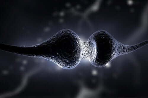 Weergave van hoe setraline wordt afgegeven