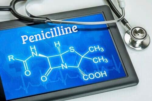 Leer meer over penicilline en het gebruik ervan