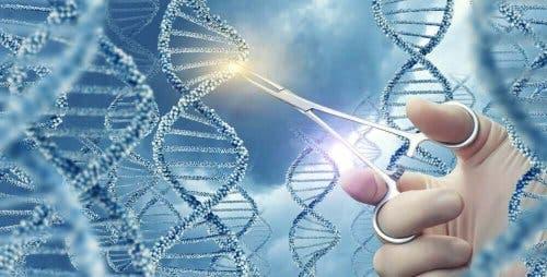 De pan-kanker genomische studie en DNA