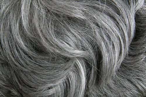 Stress veroorzaakt grijs haar volgens een studie