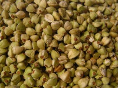 Boekweit om glutenvrije pasta van te maken