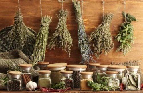 Verschillende soorten kruiden