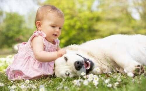 Deze baby is niet bang voor dieren