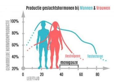 Wat zijn geslachtshormonen en wat doen ze?