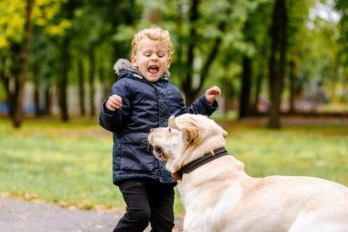 Mijn kind is bang voor dieren, wat moet ik doen?