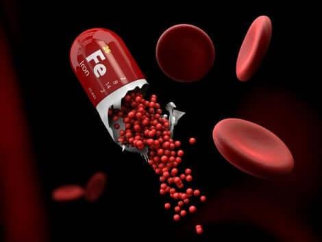 Capsule en rode bloedcellen