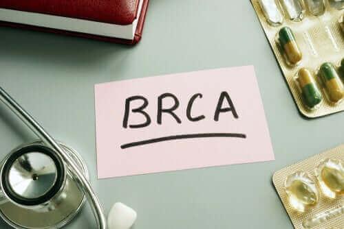 BRCA1 en BRCA2