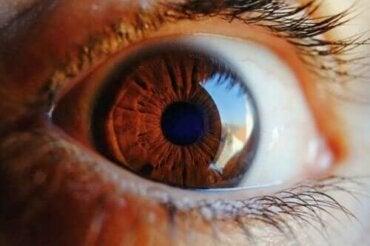 Ontdek hoe het oog zichzelf reinigt