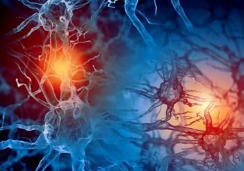 Activiteit in de hersenen