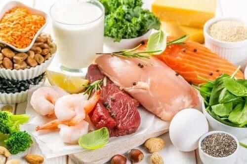 Voedingsmiddelen die rijk zijn aan vitamine b