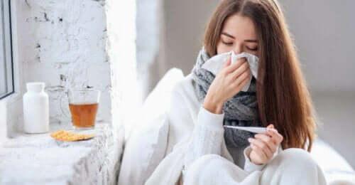 Vlierbessen tegen griep en verkoudheid
