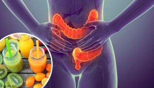 Voeding voor een gezond lichaam