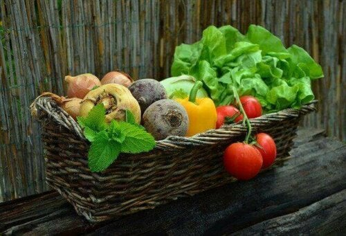 Het juiste dieet voor mensen met kanker