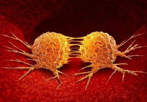Een afbeelding van kankercellen