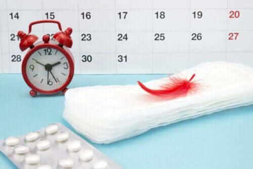 Hypothalamische amenorroe en de menstruatiecyclus