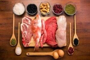 Alles over de functies van eiwitten in het lichaam