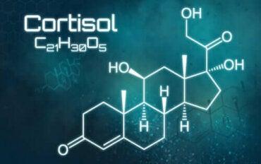 Alles wat je moet weten over een overschot aan cortisol