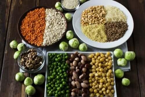 Plantaardige eiwitbronnen