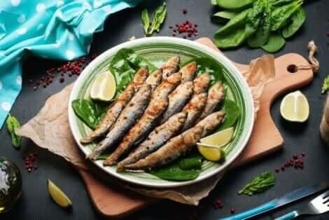 Sardines op een bord