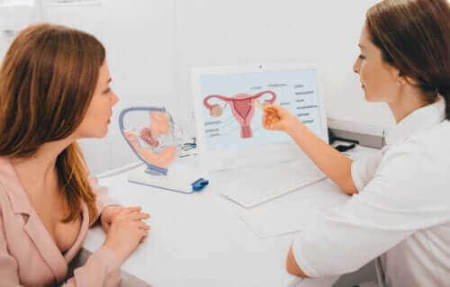 Hoe je precies kunt weten of je ovuleert