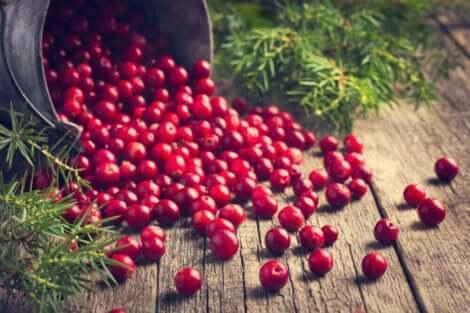 Een emmer vol cranberry's