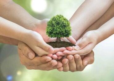 10 tips om thuis beter voor het milieu te zorgen