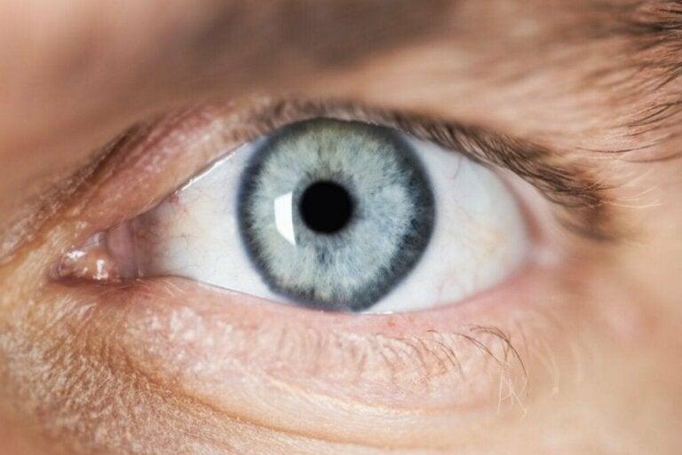 Beschrijving en oorzaken van miosis of kleine pupillen