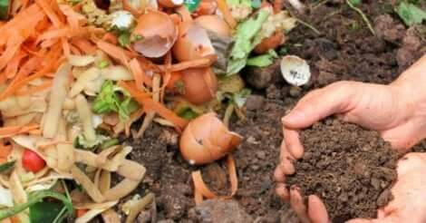 Composteren om thuis voor het milieu te zorgen