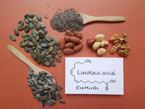 Noten en zaden die linolzuur bevatten