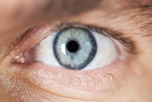 Close-up van een oog