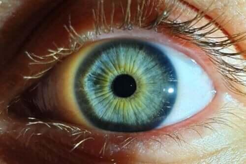 Kleine pupil