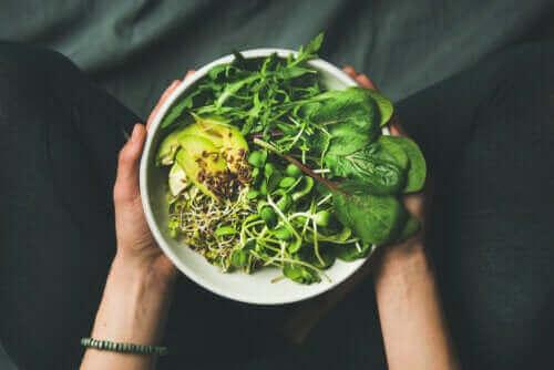 Veganistisch, vegetarisch en flexitarisch: de verschillen