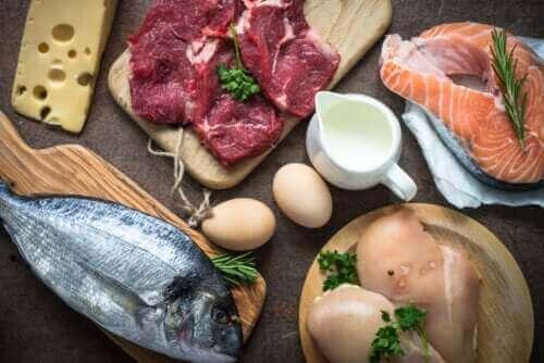 Waarom is het belangrijk om eiwitten te consumeren?