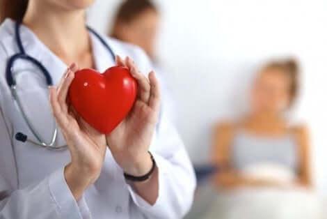 Dokter houdt een hart vast