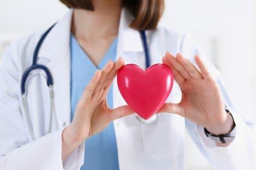 Arts houdt een hart van plastic vast