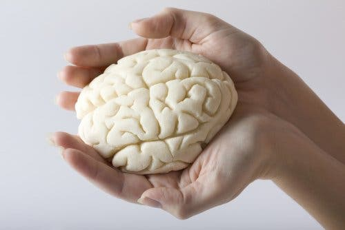 Iemand die hersenen vasthoudt