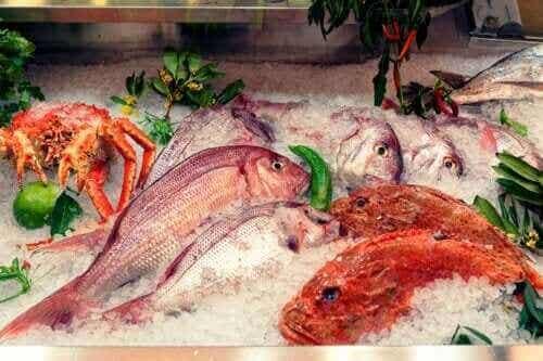Alles over de effecten van kwik in vis
