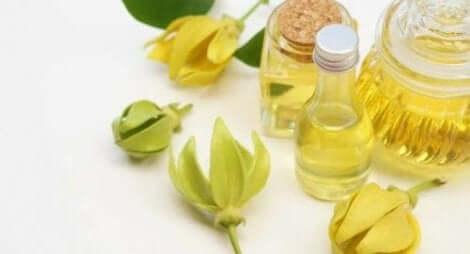 Ylang-ylang-olie om angsten onder controle te houden
