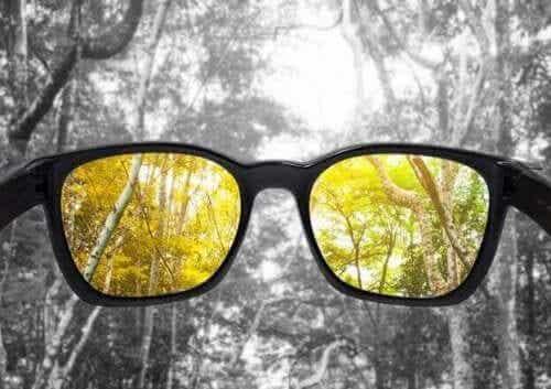 Het gebrekkig zien van kleuren of kleurenblindheid